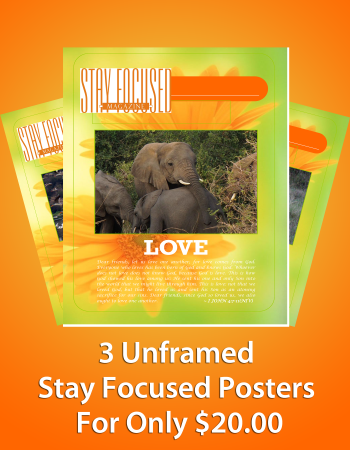 Stay Focused Poster - 3 Pack